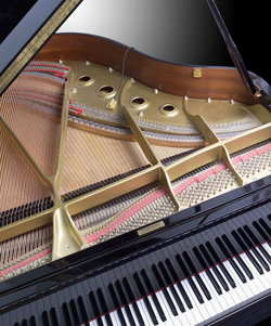 Do you need help writing or finishing your song? Does your song need some instrumental assistance, orchestration or arrangement? Call New Jersey pianist Arnie Abrams!